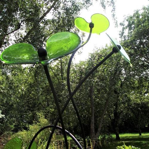 bean tree leaves detail