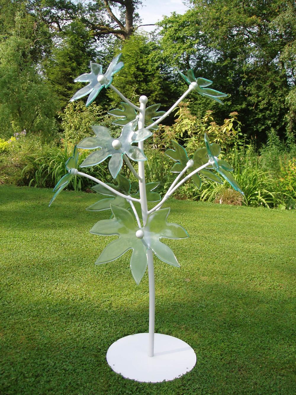 transparent plant 1