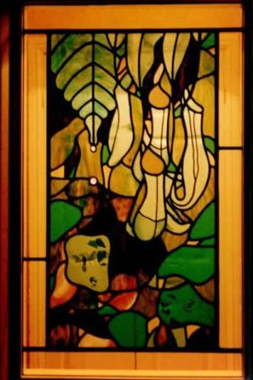 tropical-window